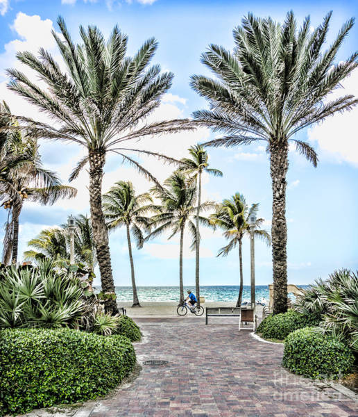 Wall Art - Photograph - A Bicycle Ride Along The Beach In Hollywood Florida by William Kuta