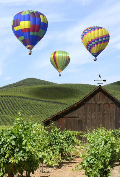 Mike Photograph - A Ride Through Napa Valley by Mike McGlothlen