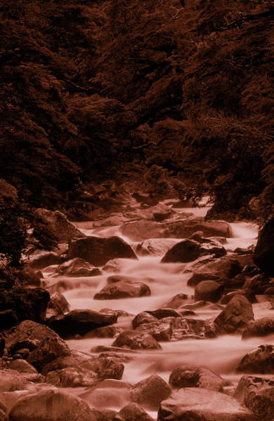 Wall Art - Photograph - A River Running Alongside One by David McLain
