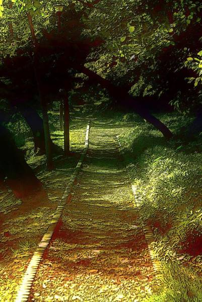 Photograph - A Road Less Travelled by Tim Ernst