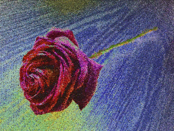 A Rose For You From Kenneth James Art Print