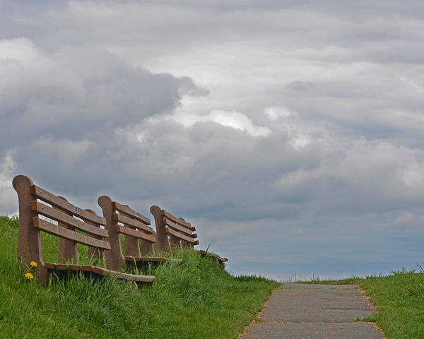 Photograph - A Row Of Benches In Gloucester Ma by Toby McGuire