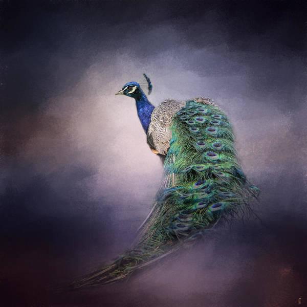 Photograph - A Royal Jewel - Peacock - Wildlife by Jai Johnson