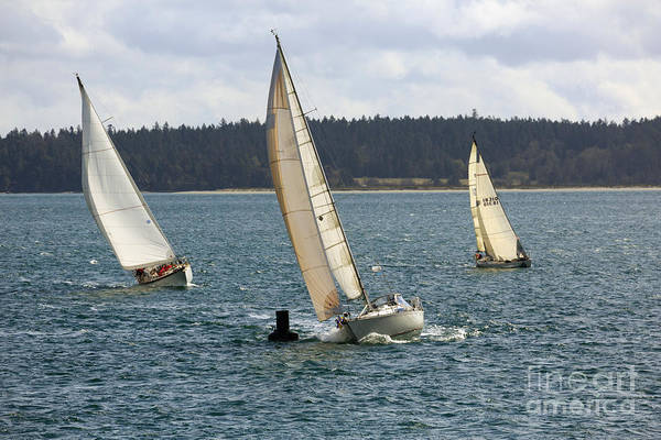 Racing Yacht Photograph - A Sailing Yacht Rounds A Buoy In A Close Sailing Race by Louise Heusinkveld