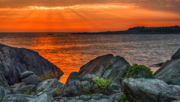 Photograph - A Sailor's Delight  by Garvin Hunter