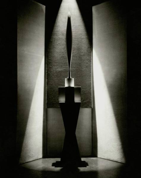 Wall Art - Photograph - A Sculpture Called The Bird by Edward Steichen
