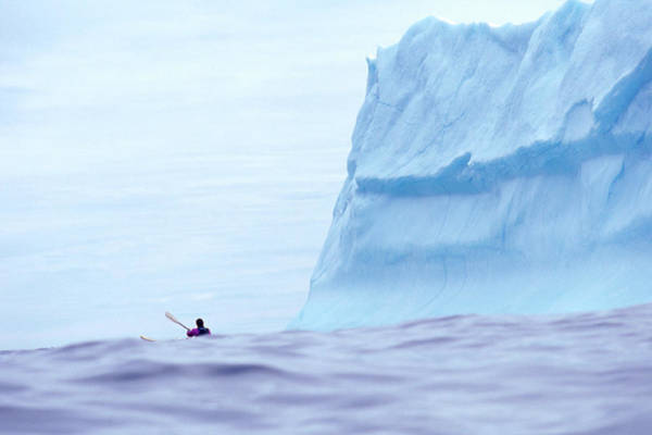 Blues Alley Photograph - A Sea Kayaker Paddles Near Icebergs by David McLain