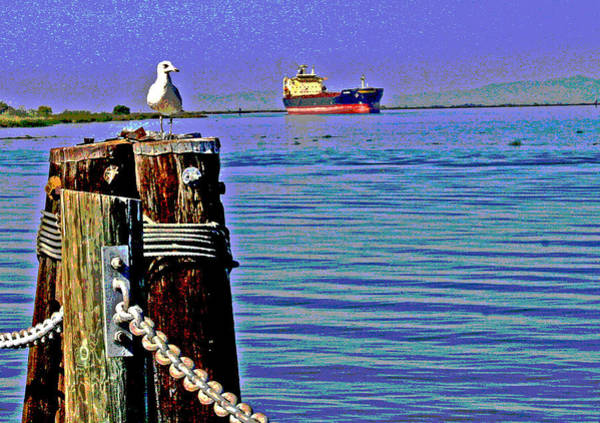 Digital Art - A Seagull View by Joseph Coulombe