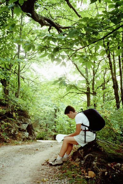 Road Map Photograph - A Seated Female Hiker Reading A Map by Ron Koeberer