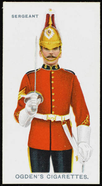Wall Art - Drawing - A Sergeant From The 5th  Dragoon Guards by Mary Evans Picture Library