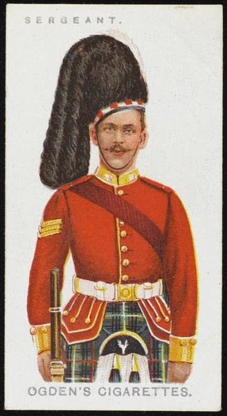 Wall Art - Drawing - A Sergeant From The Seaforth by Mary Evans Picture Library