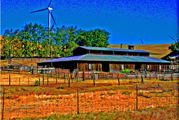 Photograph - A Sheep Ranch In Autumn Blue And Gold by Joseph Coulombe