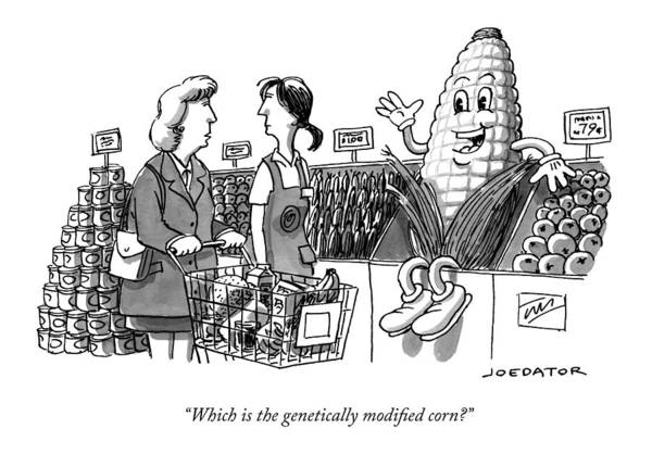 Organic Drawing - Which Is The Genetically Modified Corn by Joe Dator