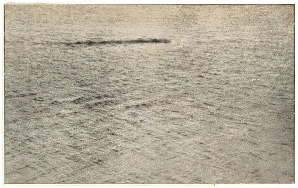 Wall Art - Photograph - A Sighting Of The Loch Ness Monster by Mary Evans Picture Library