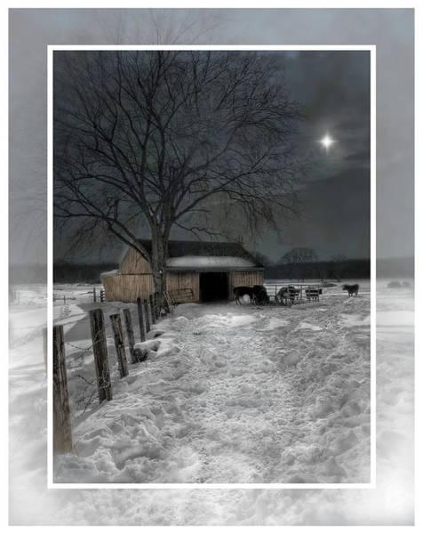 Photograph - A Silent Night by Robin-Lee Vieira