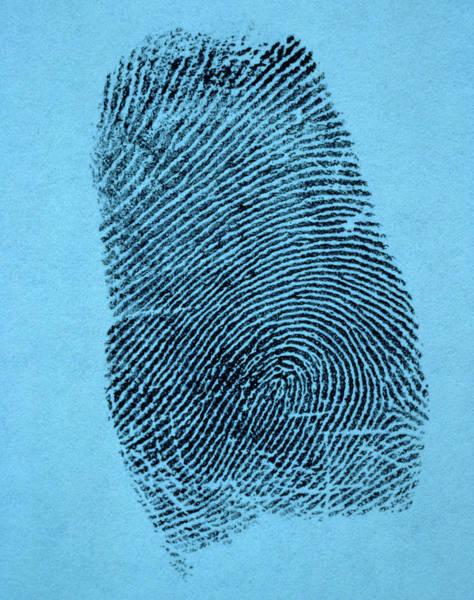 Impression Photograph - A Single Fingerprint by Vintage Images