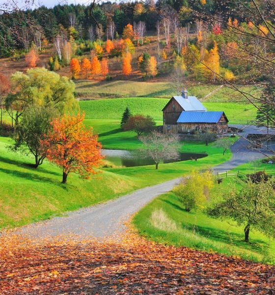 Photograph - Sleepy Hollow Autumn - Pomfret Vermont by T-S Fine Art Landscape Photography