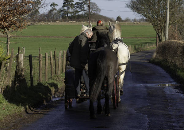 Horsepower Photograph - A Slower Pace Of Life by Nigel Jones