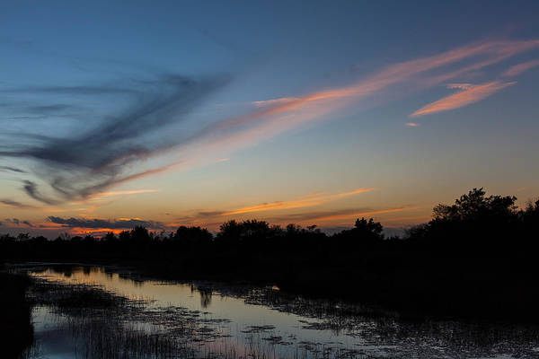 Photograph - A Small Part Of Florida by Ed Gleichman
