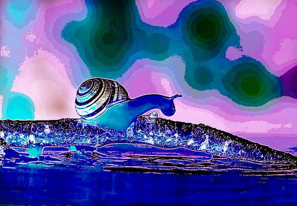 Digital Art - A Snails Face by Karen Buford