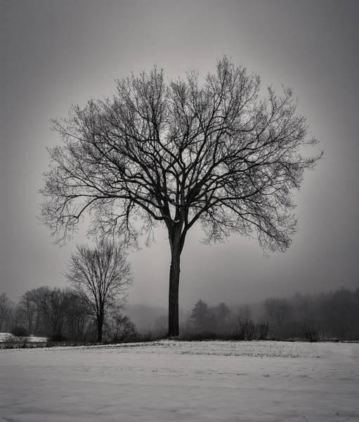 Henniker Photograph - A Snowy Glow by Scott Snyder