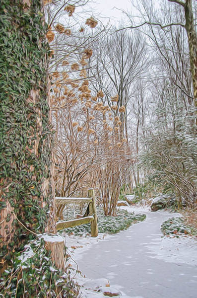 Photograph - A Snowy Path In The Woods by Beth Sawickie