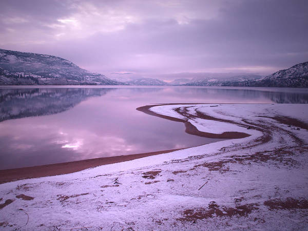 Photograph - A Snowy Shore by Tara Turner