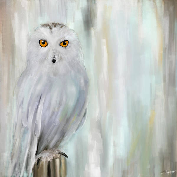 Barn Owl Painting - A Snowy Stare by Lourry Legarde