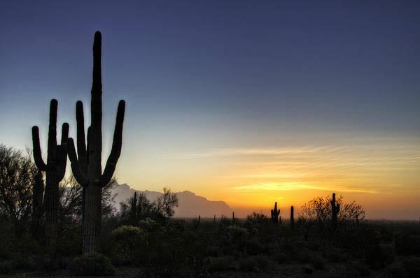 A Sonoran Sunrise  Art Print