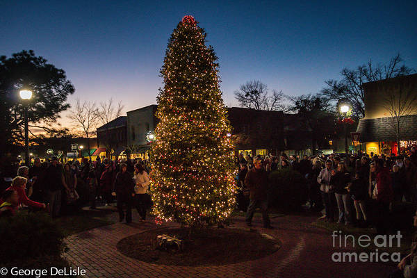 Photograph - A Southern Pines Christmas 2 by George DeLisle