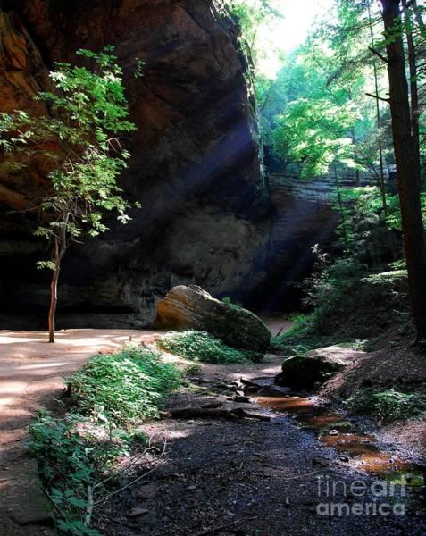 Hocking Hills Photograph - A Special Light by Mel Steinhauer