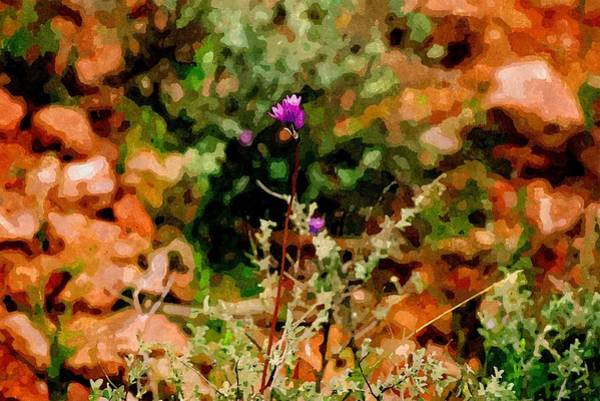 Oak Creek Canyon Painting - A Splash Of Heliotrope by Duende Artworks