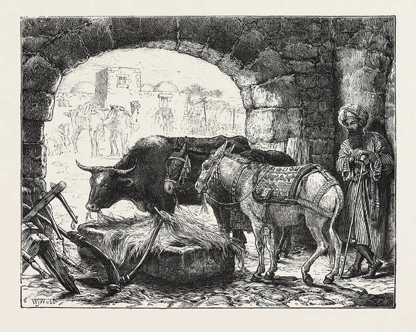 Bethlehem Drawing - A Stable At Bethlehem by English School