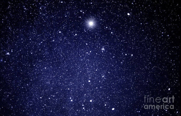 Photograph - A Star Appeared In The East... by Thomas R Fletcher