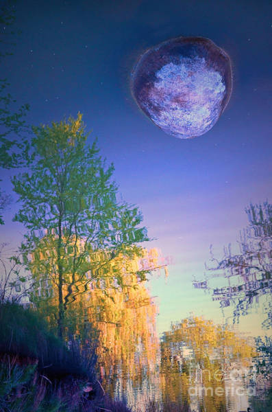 Photograph - A Stone Moon by Tara Turner