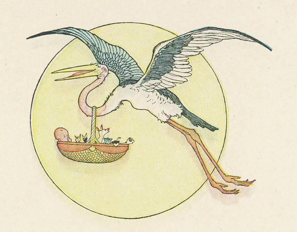 Wall Art - Drawing - A Stork Brings A Baby In A  Basket by Mary Evans Picture Library
