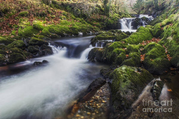 Photograph - A Stream Of Snowdon by Ian Mitchell