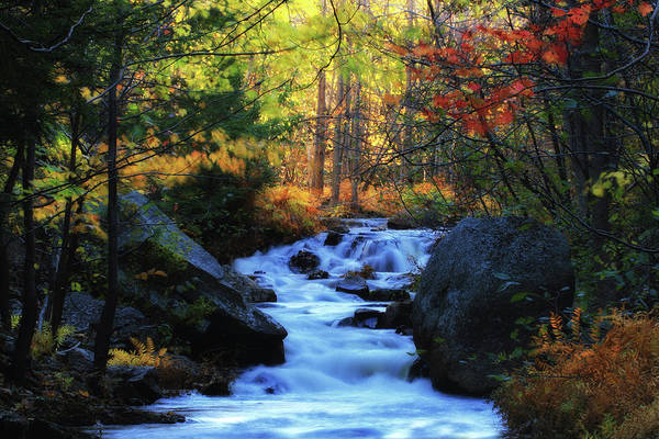 Wall Art - Photograph - A Stream With Small Waterfalls Rushing by Robbie George