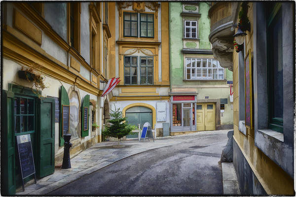 Vienna Photograph - A Street In Vienna by Joan Carroll