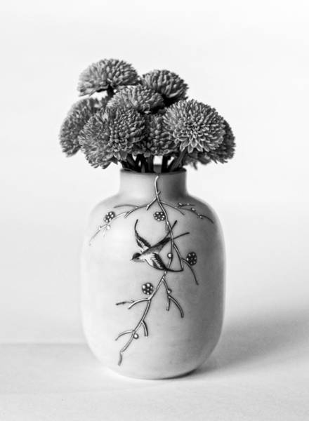 Photograph - A Study Of Mums by Andy Crawford
