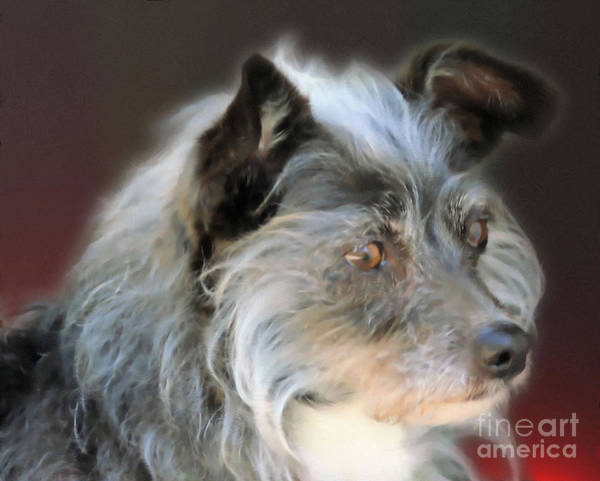 Painting - A Terrier by Smilin Eyes  Treasures