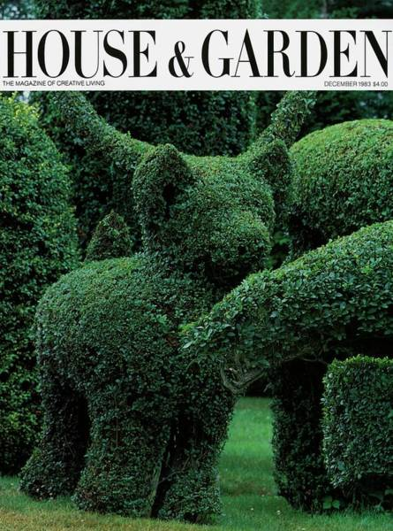 Landscape Architecture Photograph - A Topiary Bear In Alice Braytons Green Animals by Horst P. Horst