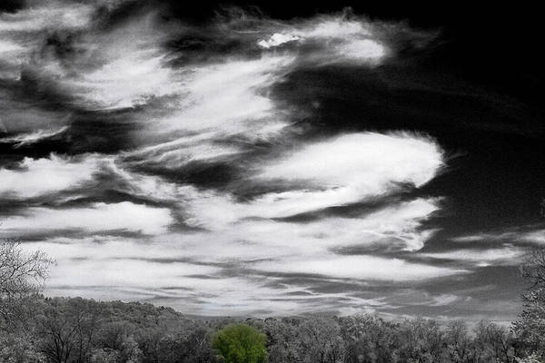 Photograph - A Touch Of Blue Sky by David Yocum