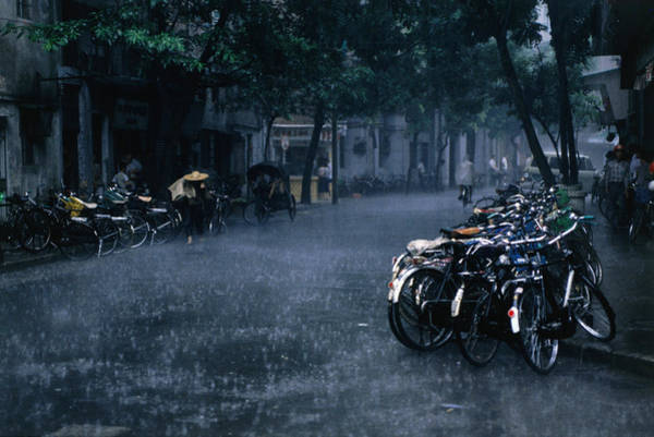 Season Photograph - A Tropical Storm Rains Down On Bicycles by Dallas Stribley