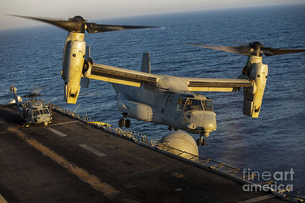 Mv-22 Photograph - A U.s. Marine Corps Mv-22b Osprey Lands by Stocktrek Images