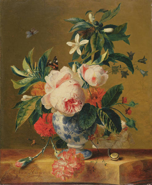 Carnation Painting - A Vase Of Flowers, 1729 by Michiel van Huysum