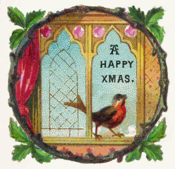 Wall Art - Drawing - A Very Early Christmas Card -  A Robin by Mary Evans Picture Library