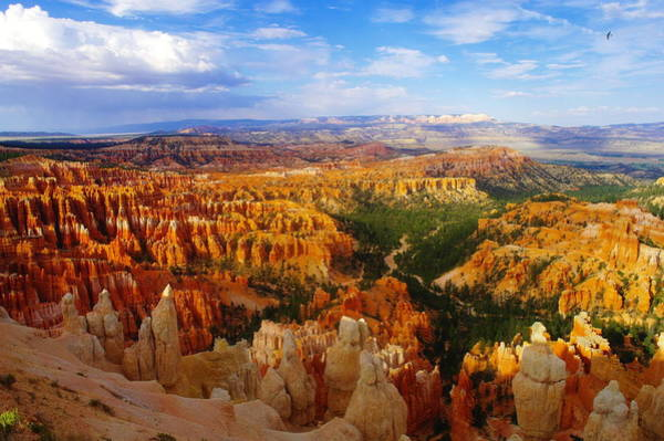 Swan Valley Photograph - A View Into Bryce by Jeff Swan