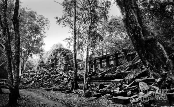 Photograph - A View Of Beng Mealea by Julian Cook