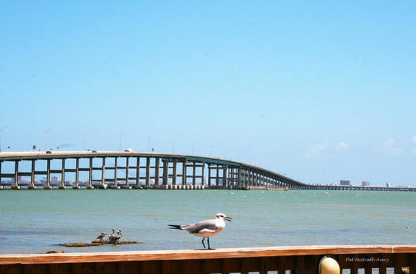Photograph - A View Of The Queen Isabella Causeway by Pat McGrath Avery